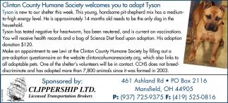 Adopt Tyson