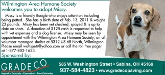 Wilmington Area Humane Society welcomes you adopt Missy