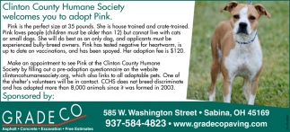Clinton County Humane Society welcomes you to adopt Pink