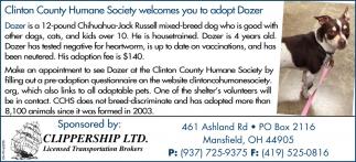 Wilmington Area Humane Society welcomes you to adopt Dozer