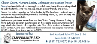 Wilmington Area Humane Society welcomes you to adopt Trevor