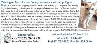 Adopt Pippin