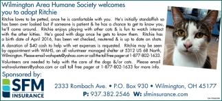 Adopt Ritchie